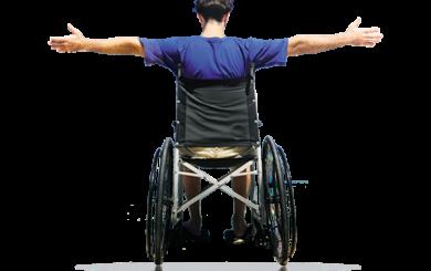 engelli kartı sorgulama